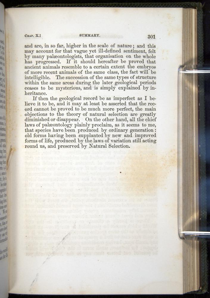 Image of Darwin-F377-1860-00301