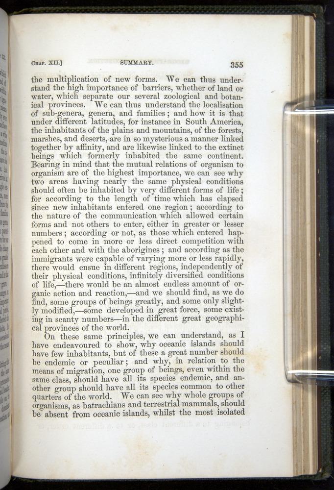 Image of Darwin-F377-1860-00355