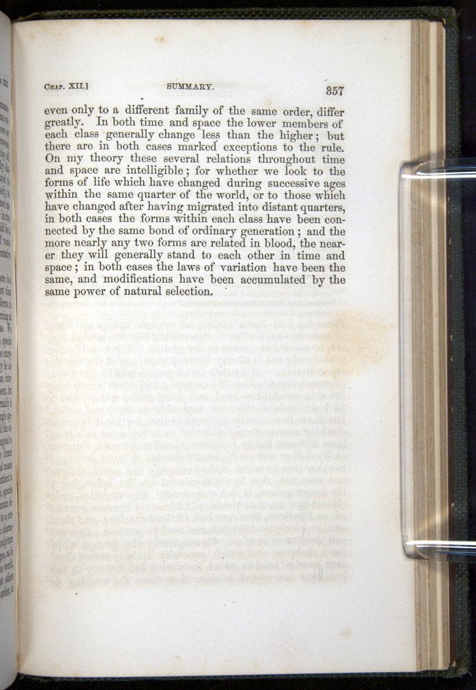 Image of Darwin-F377-1860-00357