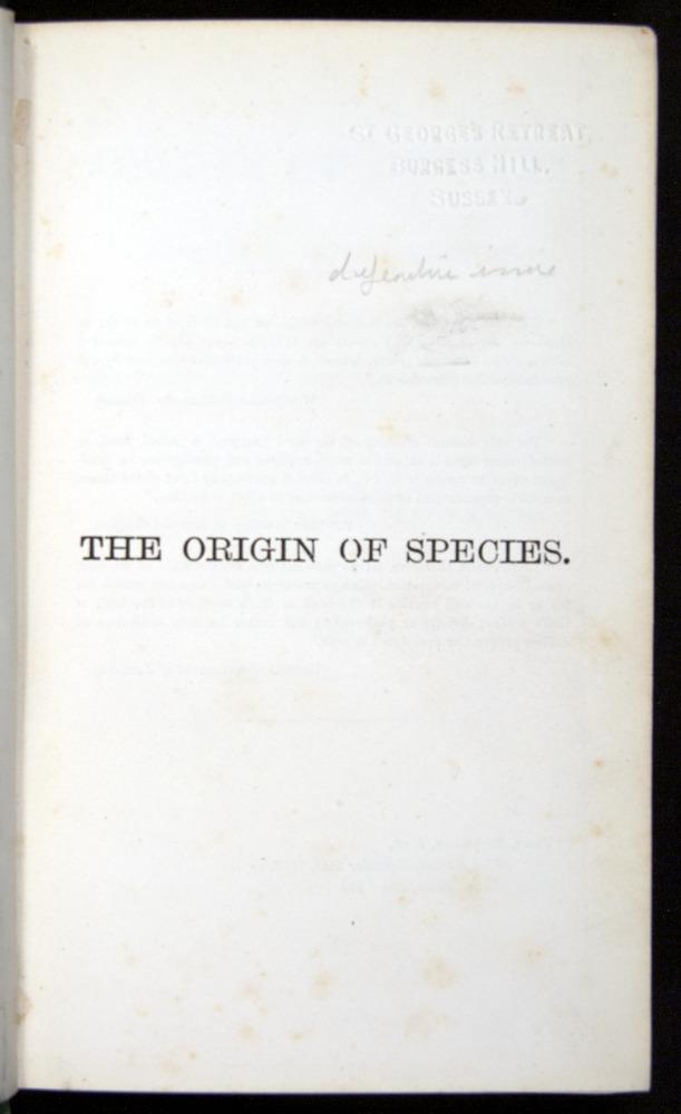 Image of Darwin-F401-1876-000-tp1