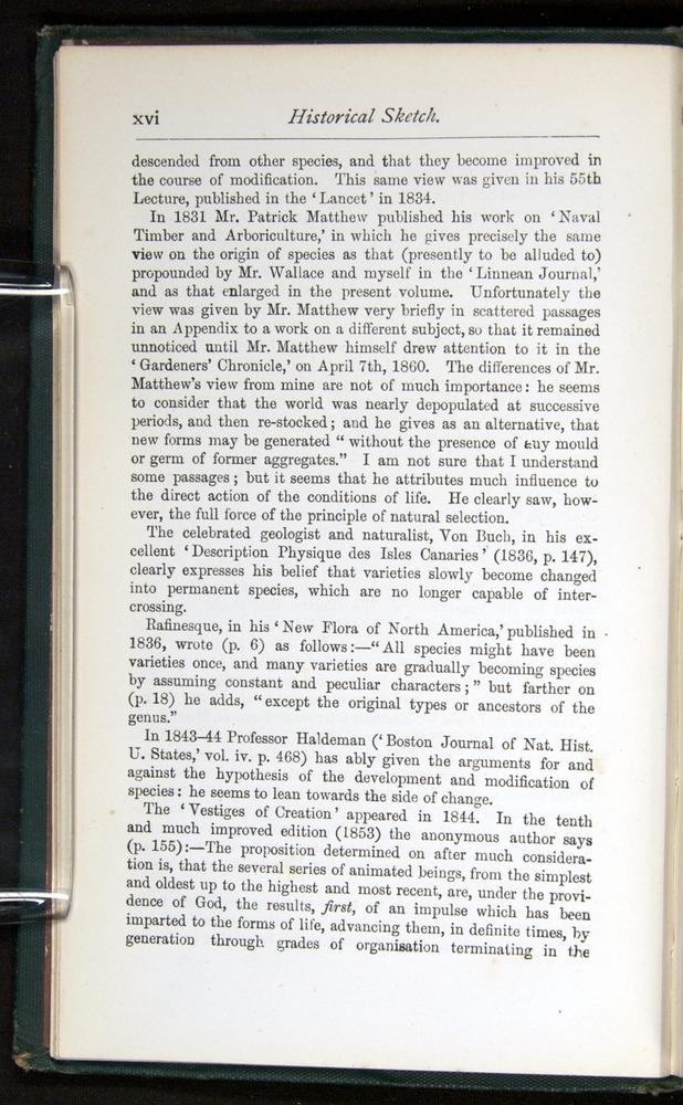 Image of Darwin-F401-1876-000-z16