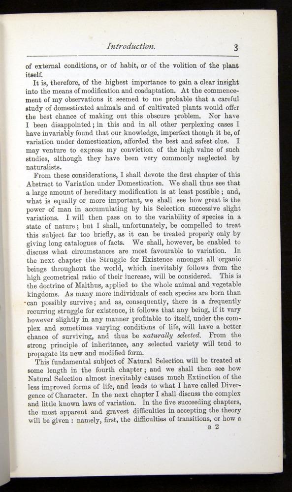 Image of Darwin-F401-1876-003