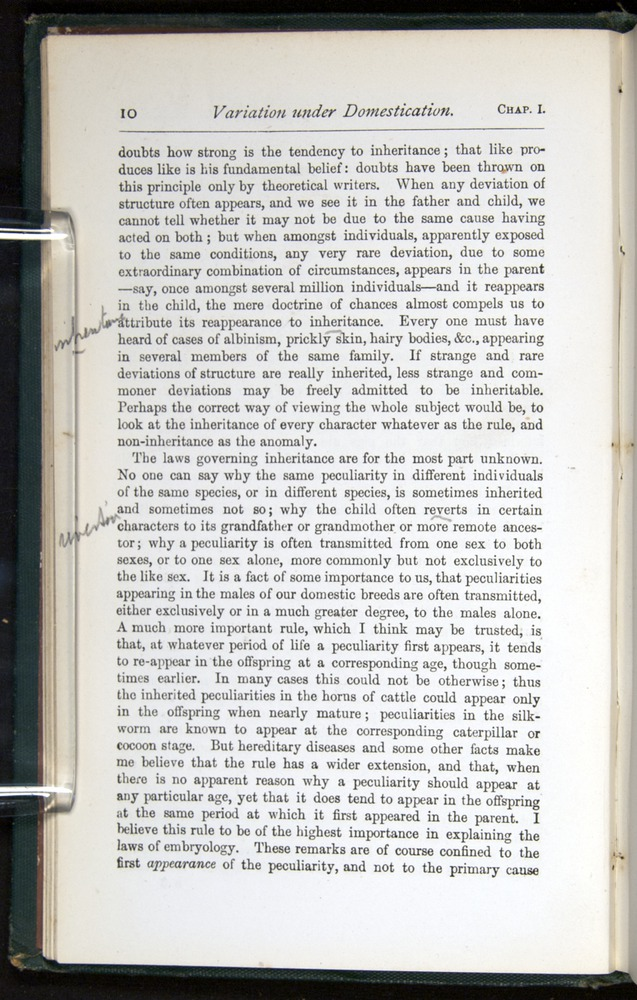 Image of Darwin-F401-1876-010