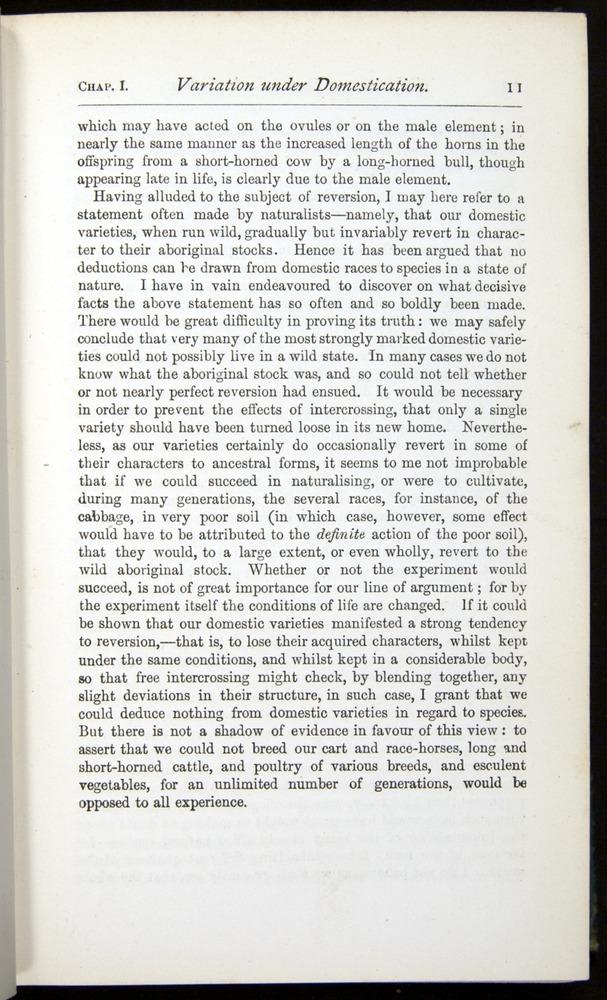 Image of Darwin-F401-1876-011