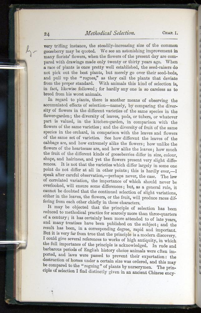 Image of Darwin-F401-1876-024