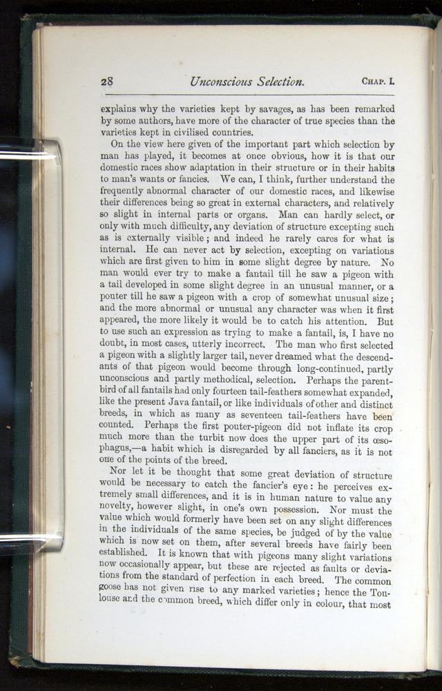 Image of Darwin-F401-1876-028