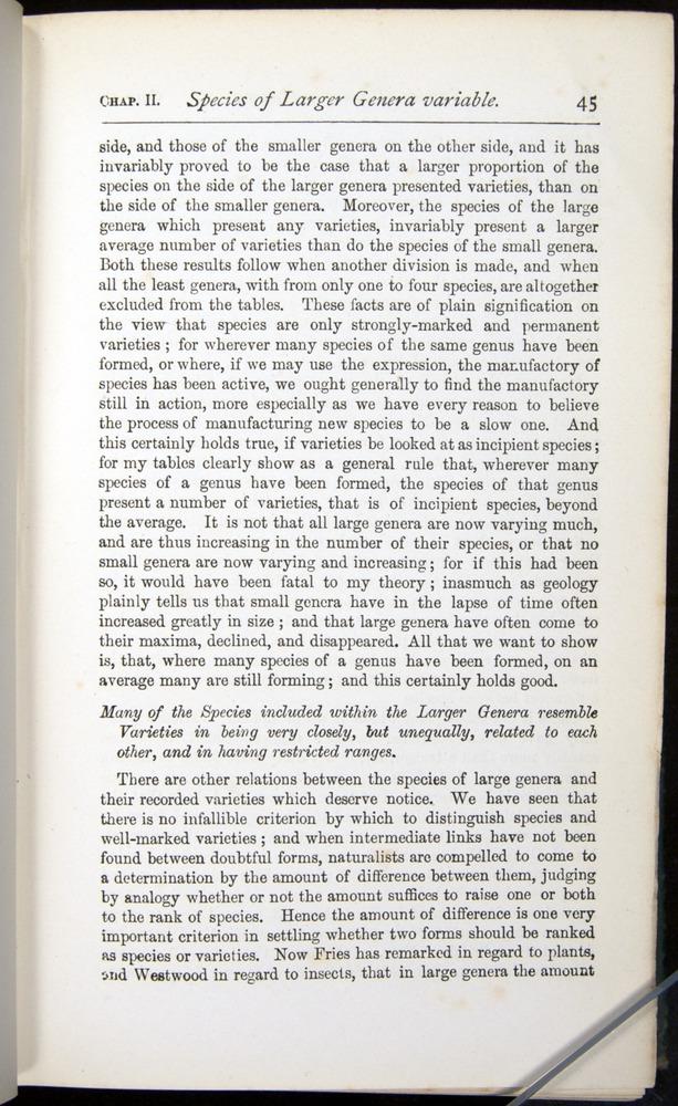 Image of Darwin-F401-1876-045