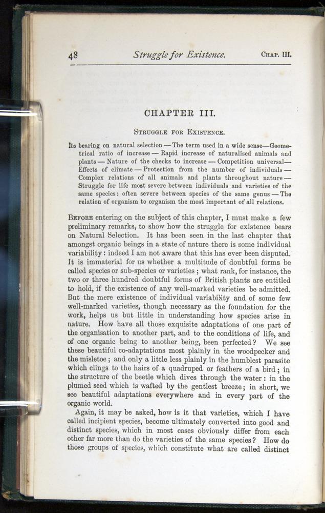 Image of Darwin-F401-1876-048