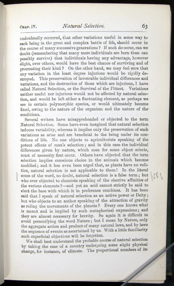 Image of Darwin-F401-1876-063