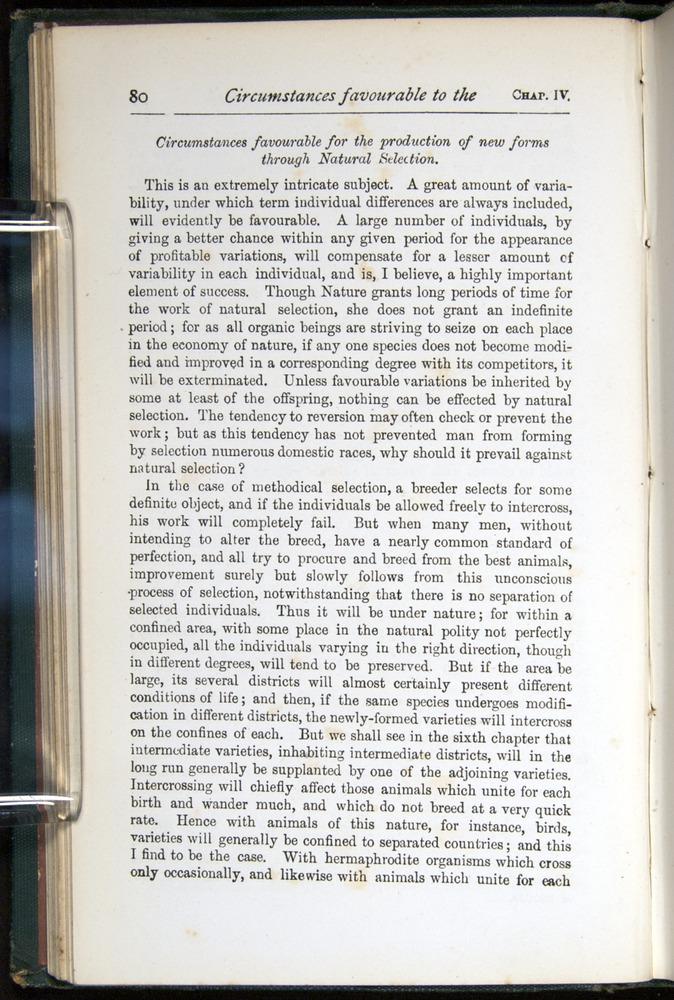 Image of Darwin-F401-1876-080