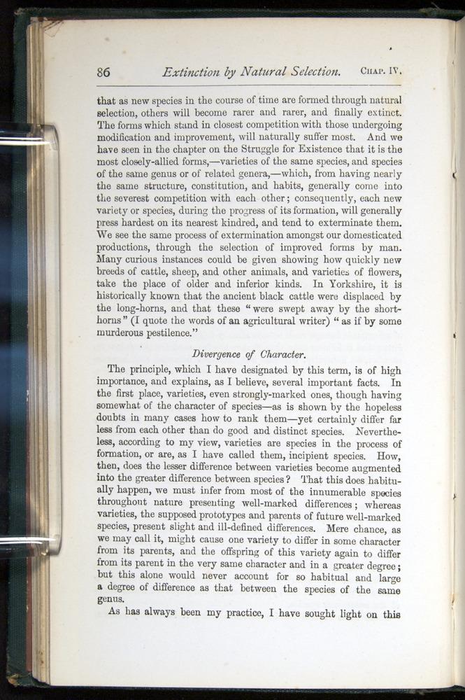 Image of Darwin-F401-1876-086
