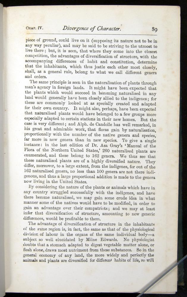 Image of Darwin-F401-1876-089