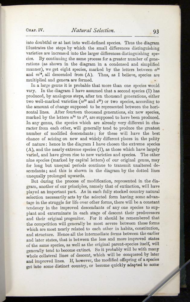 Image of Darwin-F401-1876-093