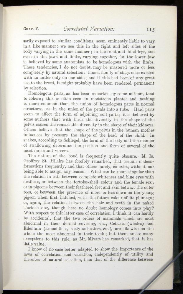 Image of Darwin-F401-1876-115