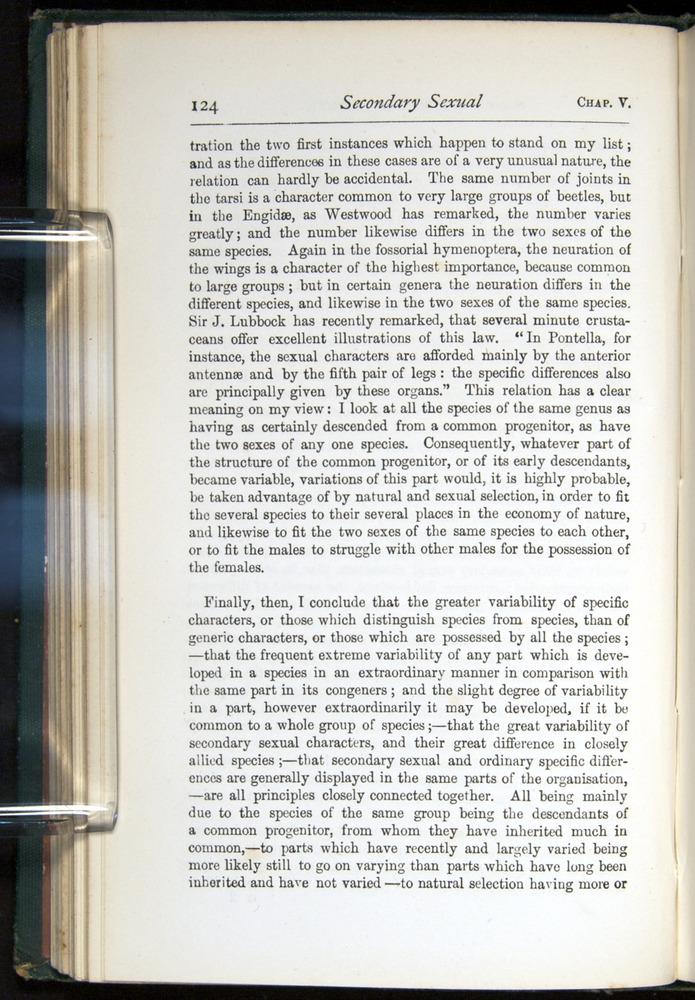 Image of Darwin-F401-1876-124