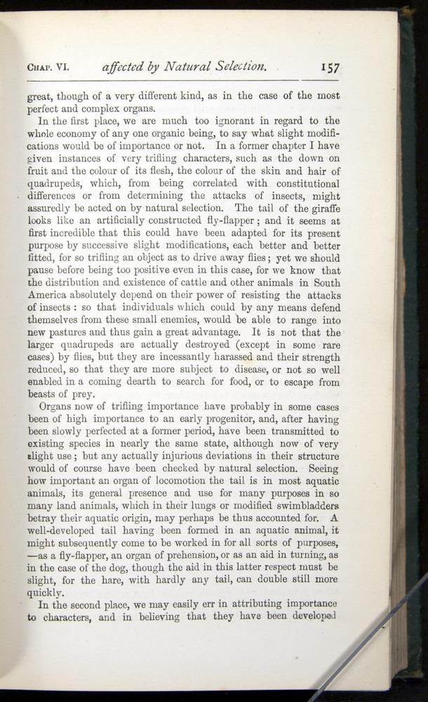 Image of Darwin-F401-1876-157
