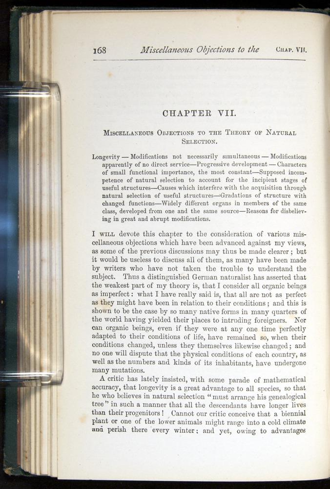 Image of Darwin-F401-1876-168