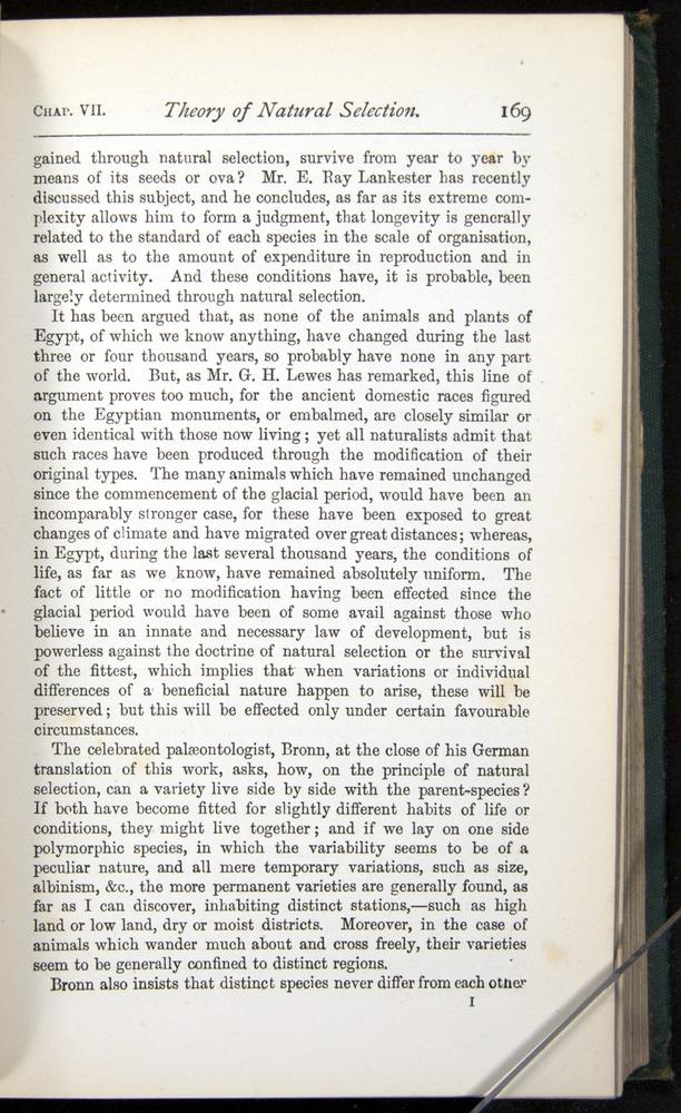 Image of Darwin-F401-1876-169