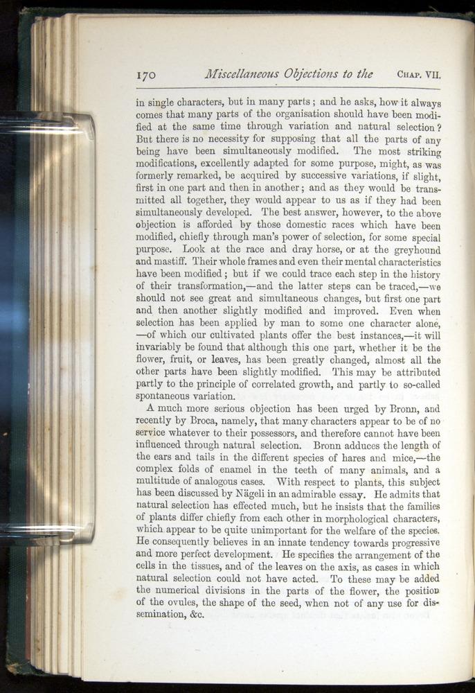 Image of Darwin-F401-1876-170