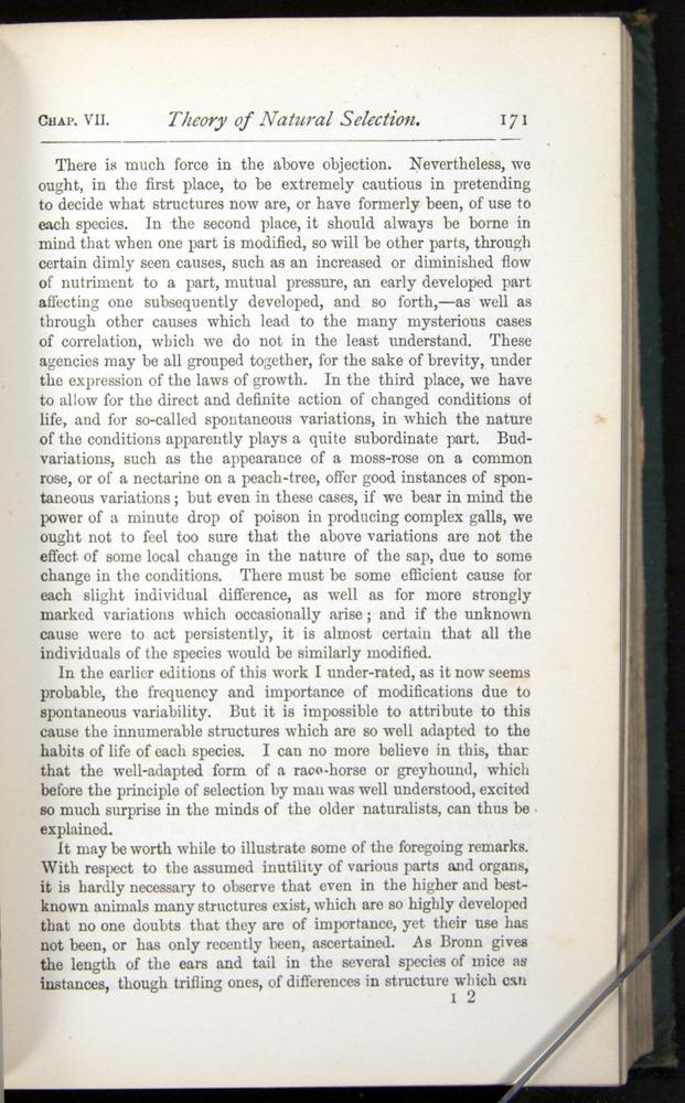Image of Darwin-F401-1876-171