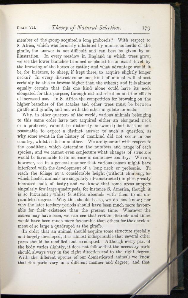 Image of Darwin-F401-1876-179