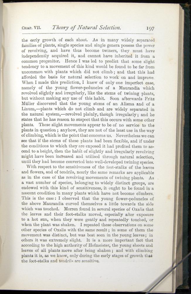 Image of Darwin-F401-1876-197