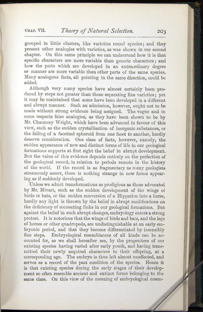 Image of Darwin-F401-1876-203