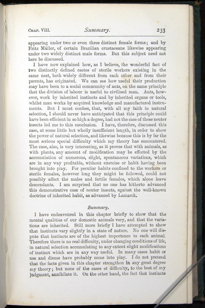 Image of Darwin-F401-1876-233