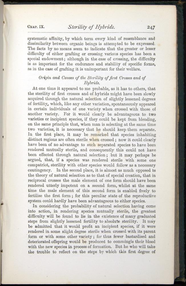 Image of Darwin-F401-1876-247
