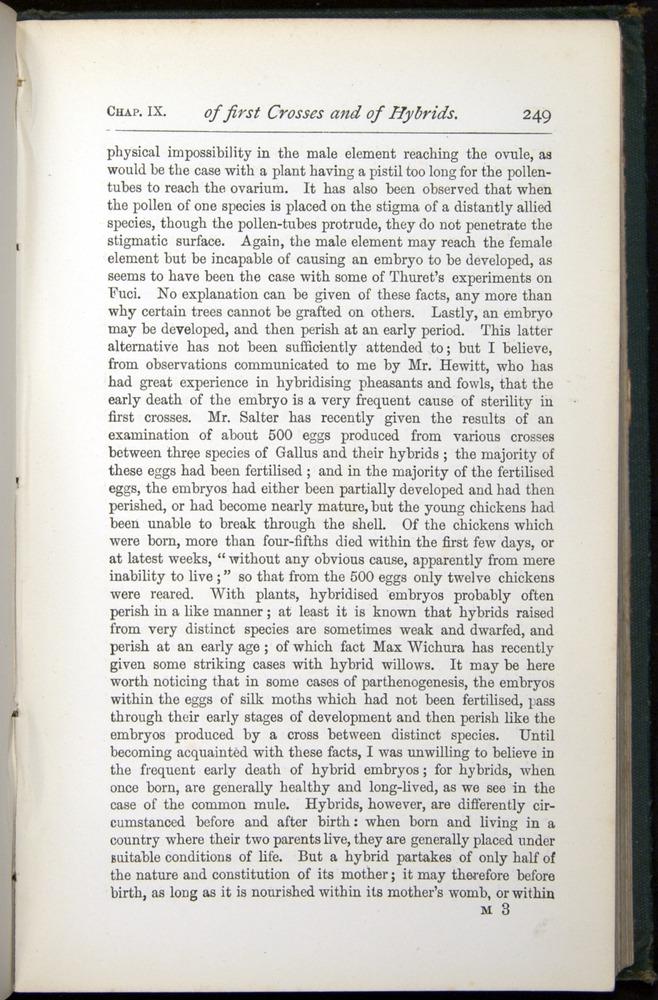 Image of Darwin-F401-1876-249