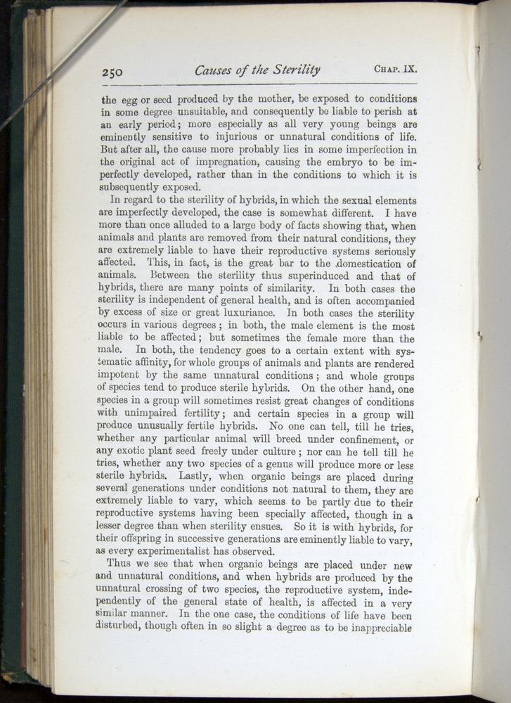 Image of Darwin-F401-1876-250