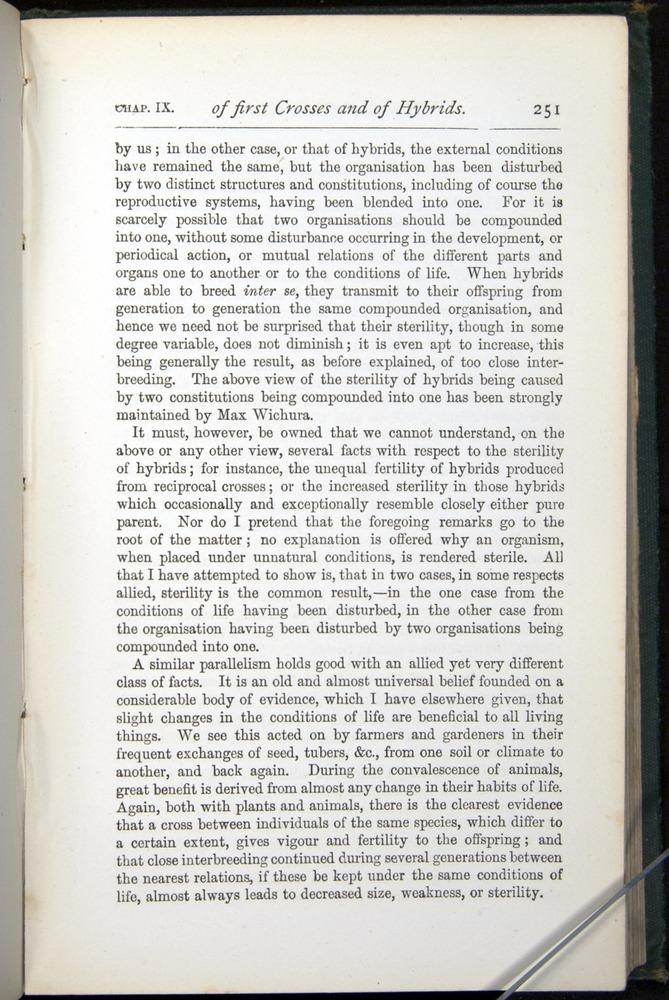 Image of Darwin-F401-1876-251