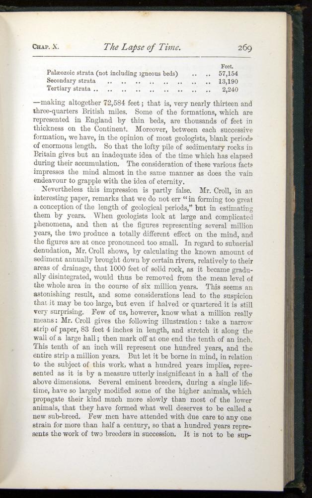 Image of Darwin-F401-1876-269