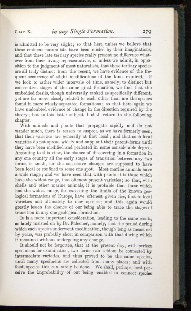 Image of Darwin-F401-1876-279
