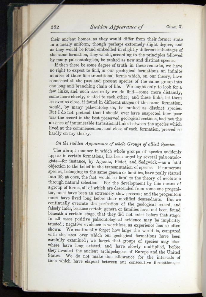 Image of Darwin-F401-1876-282