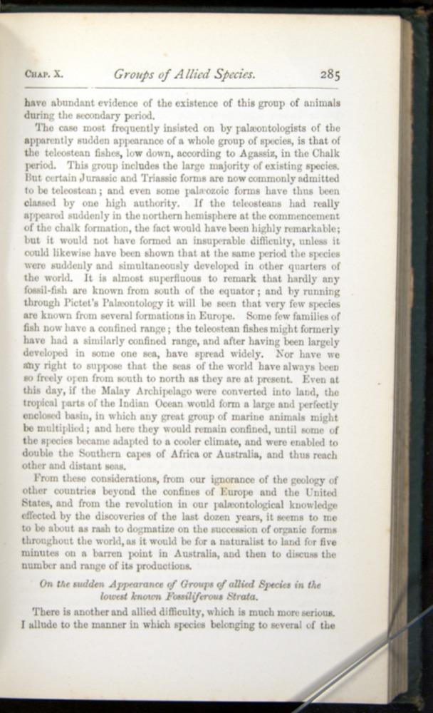 Image of Darwin-F401-1876-285