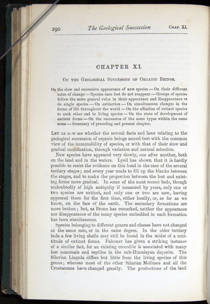 Image of Darwin-F401-1876-290