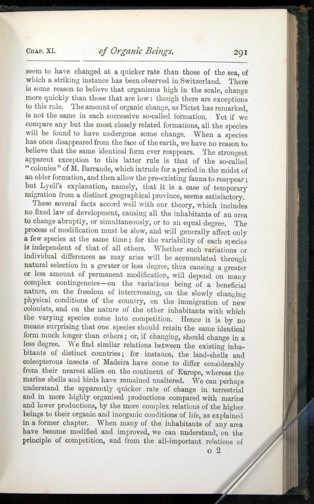 Image of Darwin-F401-1876-291