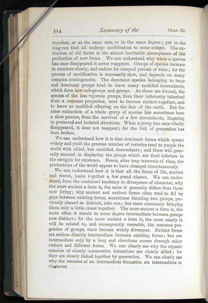 Image of Darwin-F401-1876-314