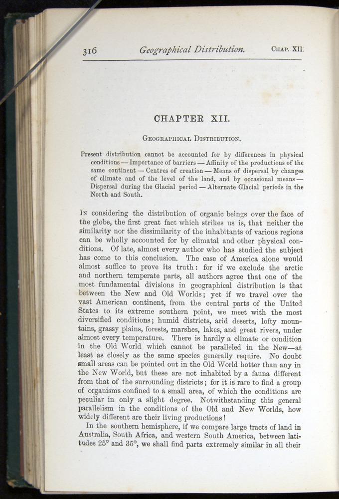 Image of Darwin-F401-1876-316
