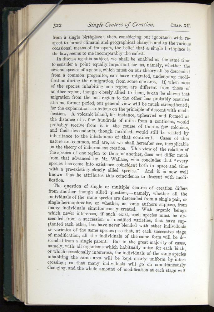 Image of Darwin-F401-1876-322
