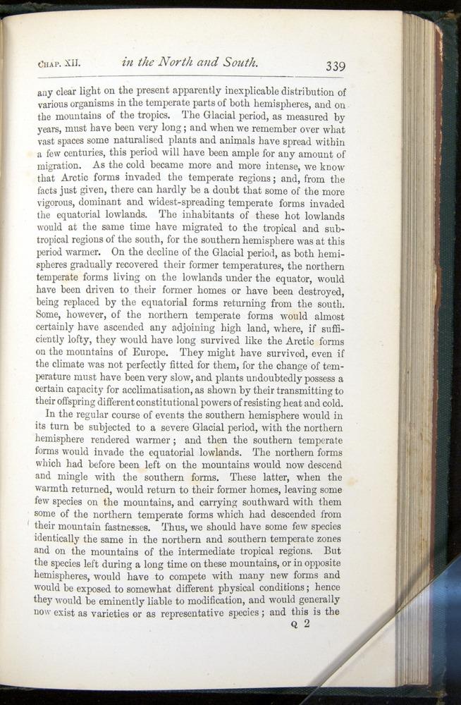 Image of Darwin-F401-1876-339