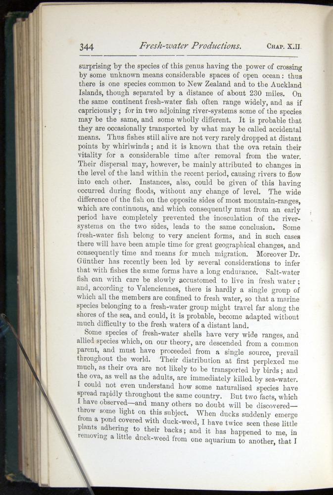 Image of Darwin-F401-1876-344