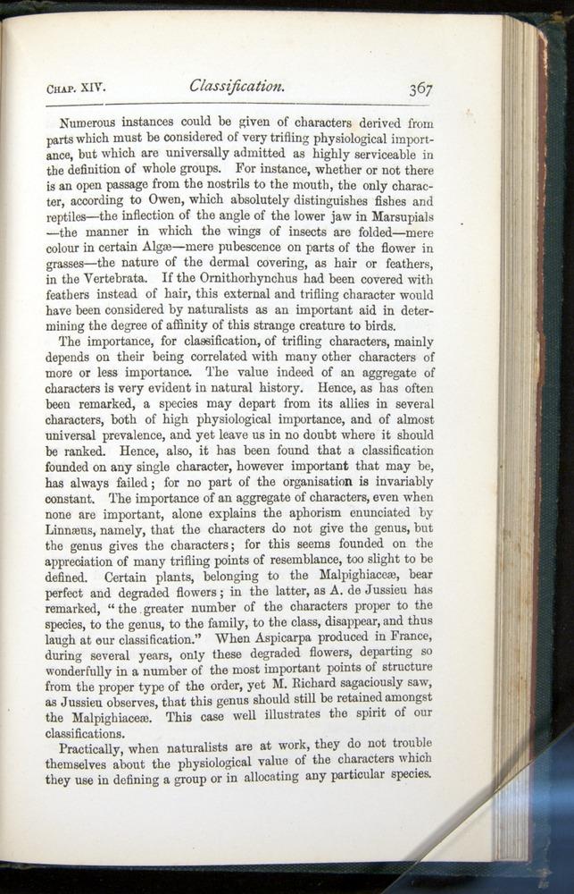 Image of Darwin-F401-1876-367