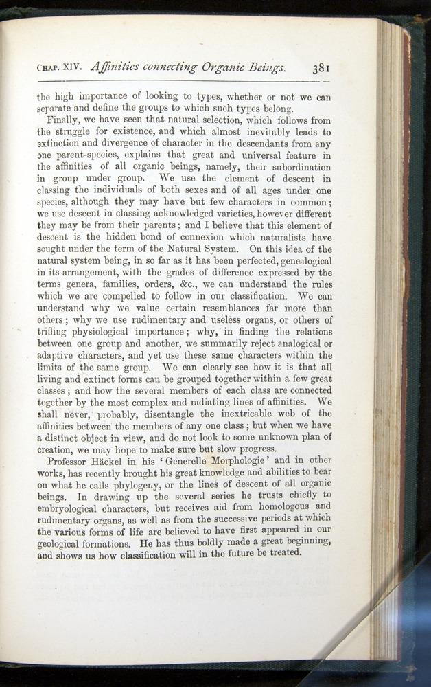 Image of Darwin-F401-1876-381