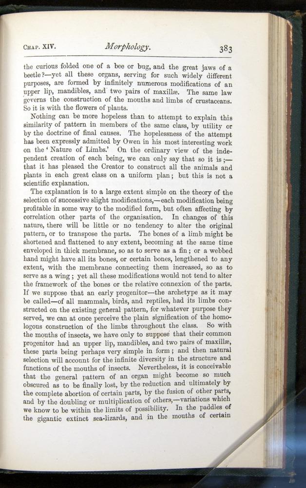 Image of Darwin-F401-1876-383