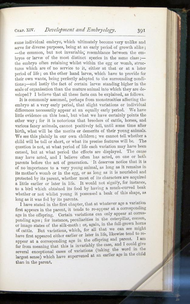 Image of Darwin-F401-1876-391