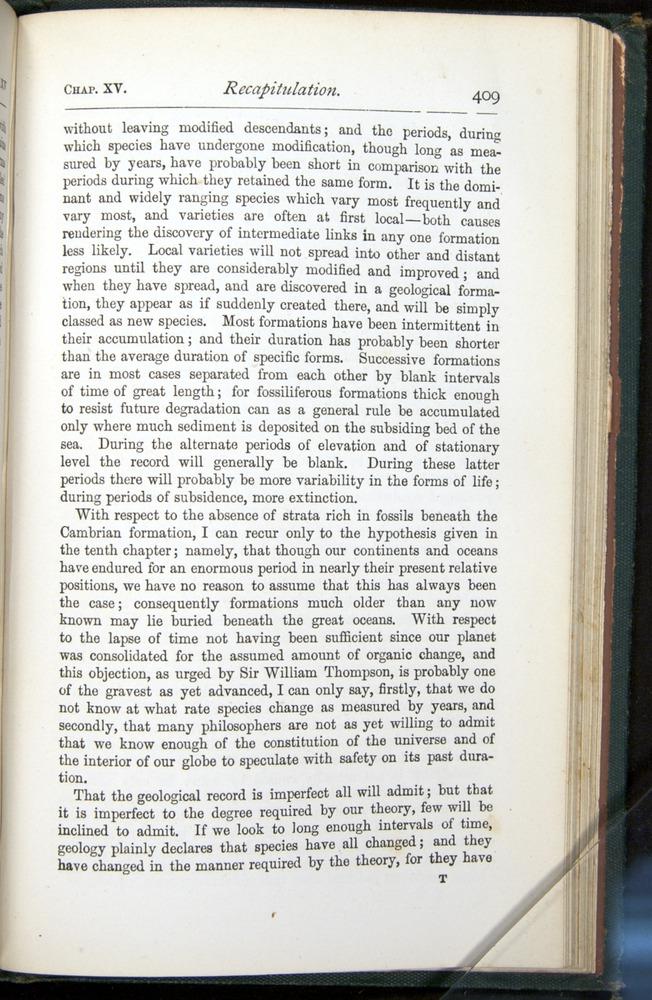 Image of Darwin-F401-1876-409