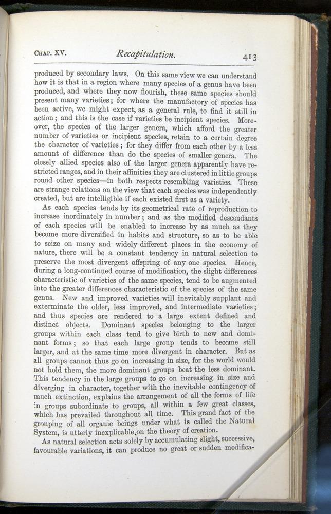 Image of Darwin-F401-1876-413