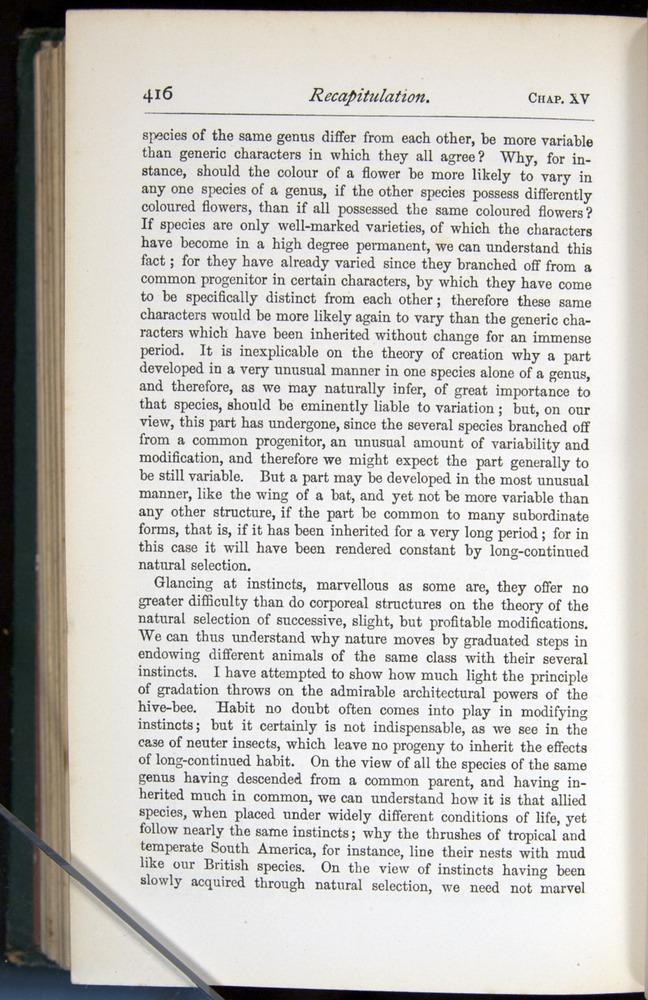 Image of Darwin-F401-1876-416